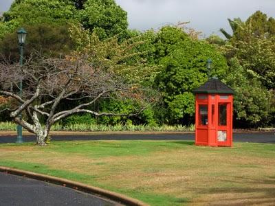 IMG 6748 Rotorua