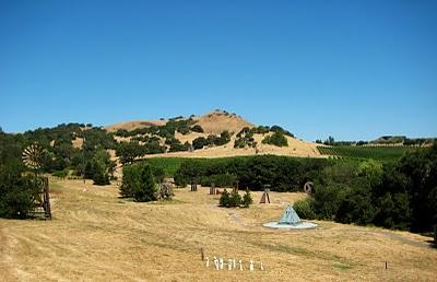 IMG 7673 Di Rosa Preserve Napa, California