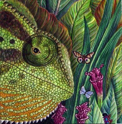 lizard1 Fauna
