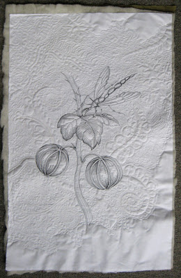 plant plant study