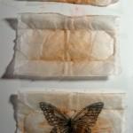 tea+bags