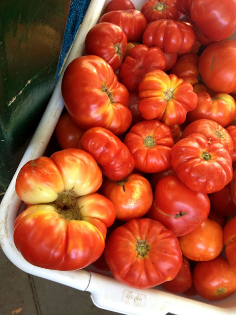 tomatoes Northern California Farmers Market Love