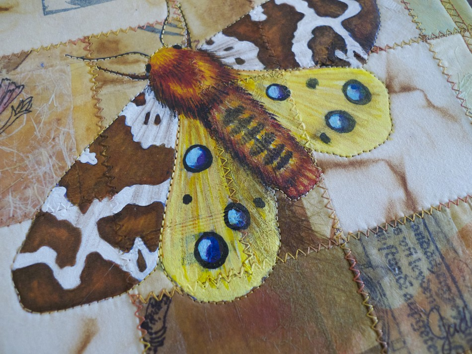moth close up 950x712 Mark your calendar for this special fundraiser