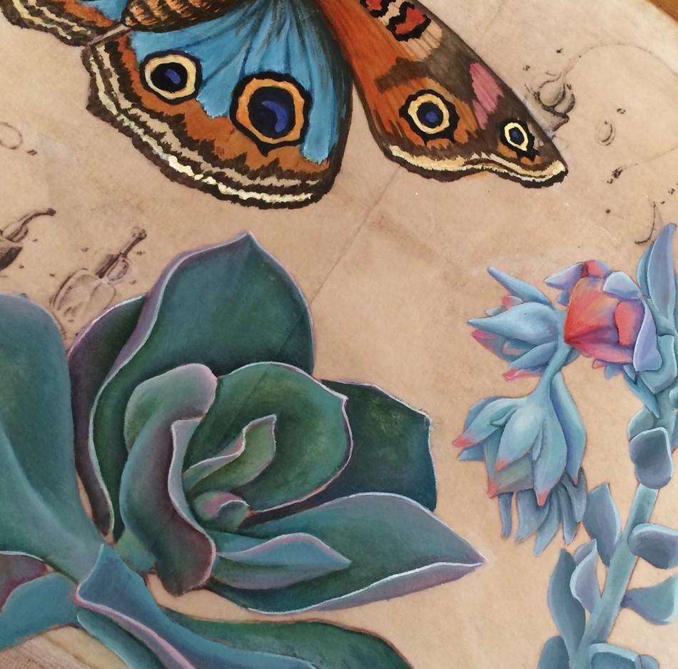 moth succulent detail